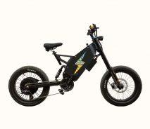 Электровелосипед Charger mini 3K